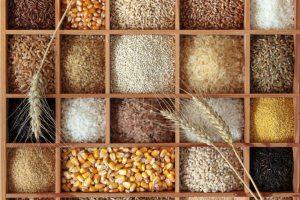 Wie viel Protein steckt im Getreide?